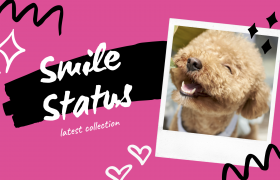 Smile Status