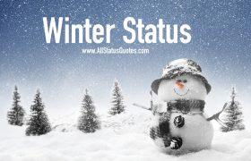 Winter Status