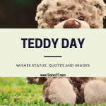 Happy Teddy Day Wishes Status, Quotes and images