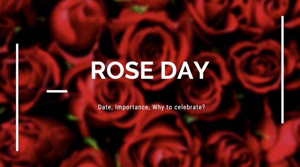 rose day image