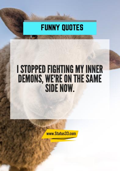 amazing funny quotes