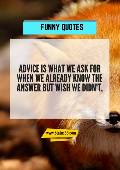 some funny quotes