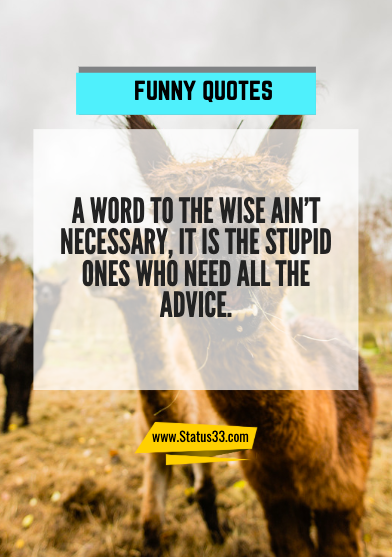 sayings funny quotes