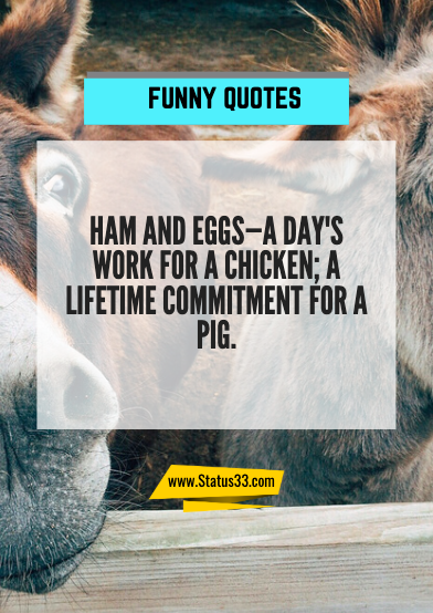 very short funny quotes about life