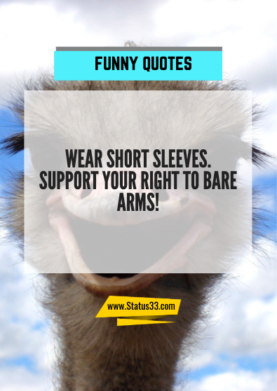 funny quotes about fun